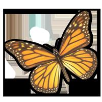 monach-for-bio-page